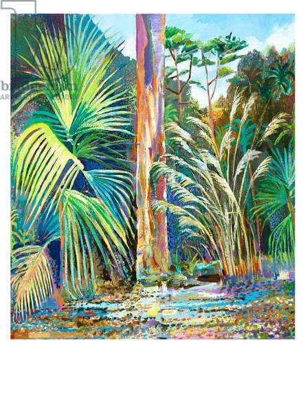 Eucalyptus and Palms, 2015 (acrylic on canvas)