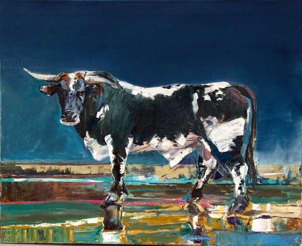 Wild Bull Hickock (oil on canvas)