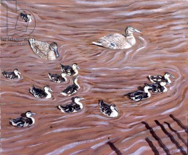 12 Ducklings