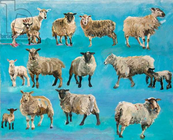 Counting Sheep (oil on canvas)