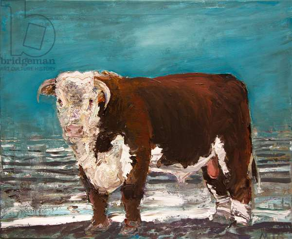 Young Hereford the 5th (oil on canvas)
