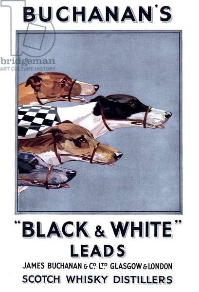 James Buchanan and Co Magazine, advert, UK, 1900s