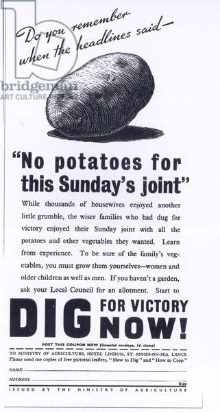 Dig for Victory Poster, UK, 1940s