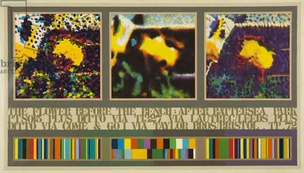 The Flower before the Bench, 1972 (acrylic on canvas)