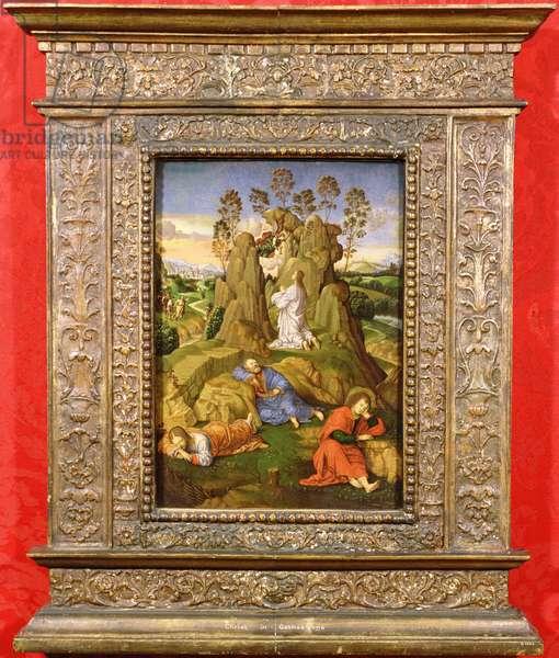 Christ in Gethsemane, c.1510 (oil on panel)