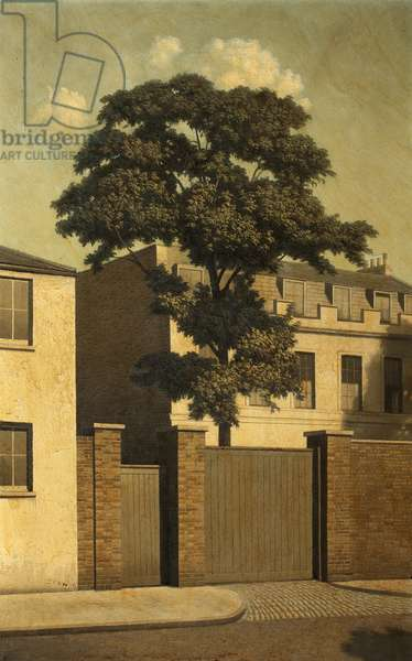 Sunshine in Hampstead, 1960-69 (oil on canvas)