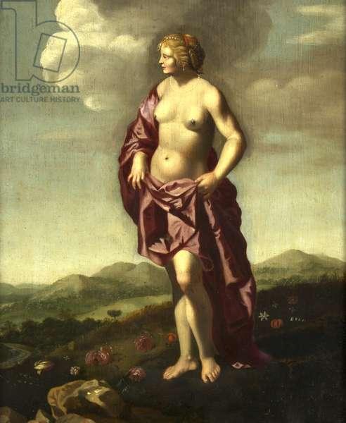 Venus in a Landscape (oil on panel)
