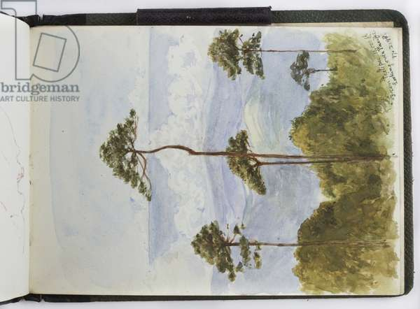 Sketchbook of watercolours, Drawings and Notes, Mexico,1896-1898 (w/c)