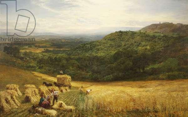 Harvest Time, 1860 (oil on canvas)