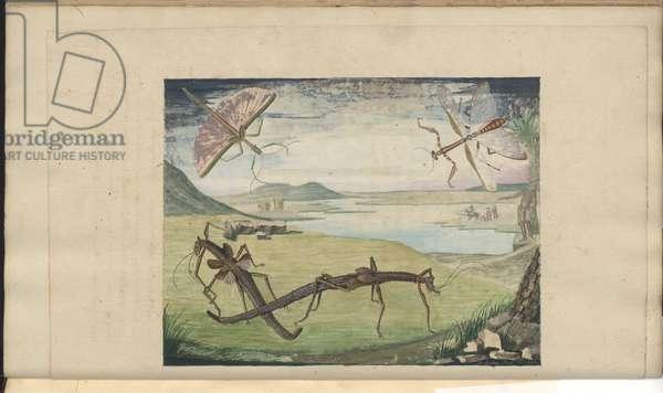 Lindsay Drawings Vol. VI, 103, 1750-79 (w/c on paper)