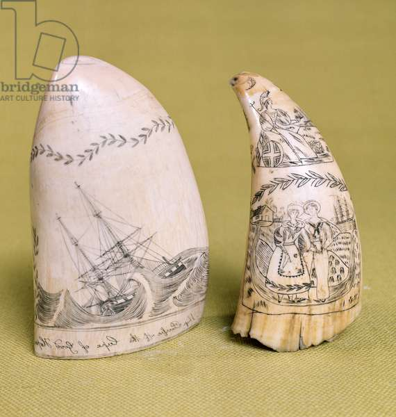 Two Engraved Sperm Whales' Teeth, 19th century (see also 66770)