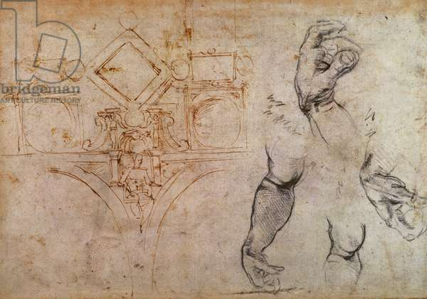 Scheme for the Sistine Chapel Ceiling, c.1508 (pen & ink and chalk on paper)