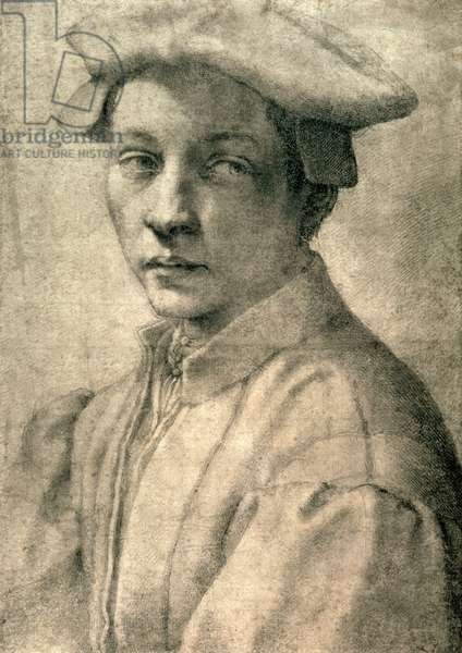 Portrait of Andrea Quaratesi, c.1532 (black chalk on paper)