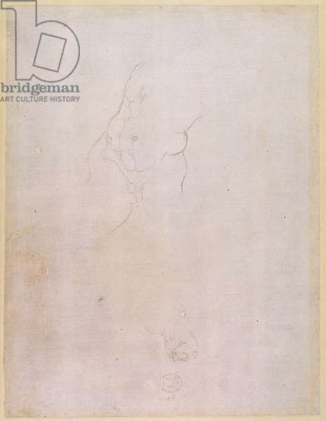 Study of a male torso (pencil on paper) (verso) (for recto see 192512)