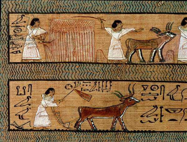 Reaping and ploughing, detail from a depiction of farming activities in the afterlife, from the Book of the Dead of the Scribe Any, c.1250 BC (painted papyrus) (detail of 22803)