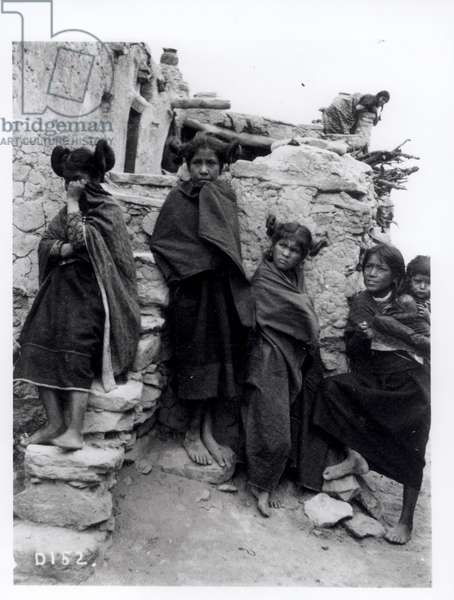 Bashful, c.1900 (b/w photo)