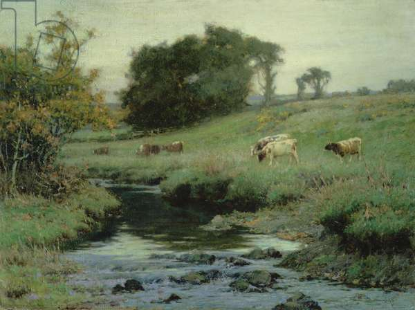 Cattle on a river bank, 1898-99 (oil on canvas)