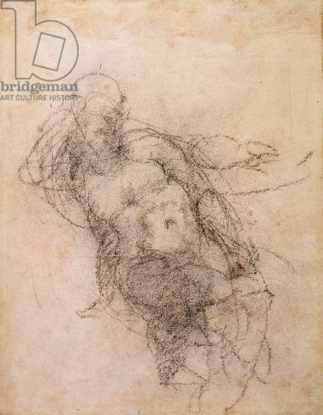 Study for Noah in 'The Drunkenness of Noah', 1508-12 (charcoal on paper) (recto)