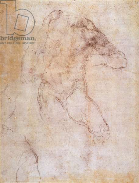 Study of a male nude (charcoal on paper) (recto) (for verso see 192511)