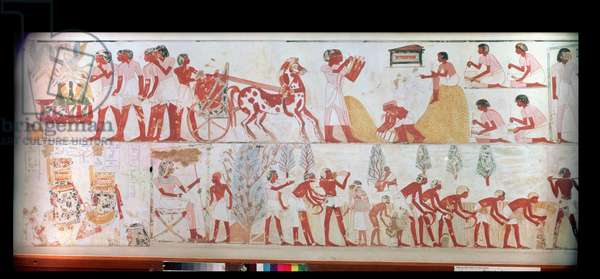 Harvest scene, copy of a wall painting from the tomb of Menna at Thebes, c.1400 BC (see also 37177)
