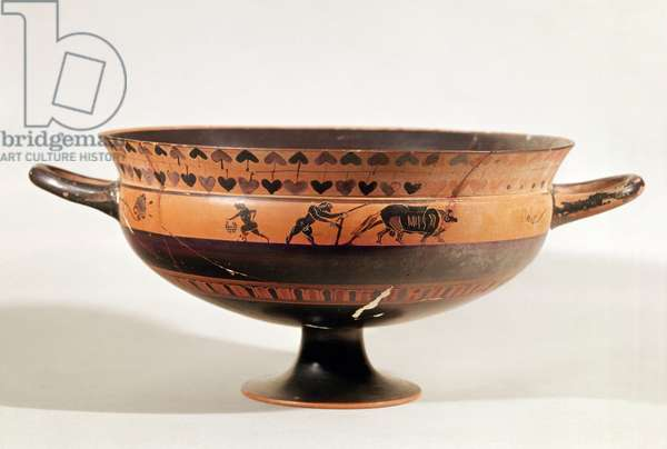 "Black figured kylix depicting ritual ploughing, possibly a scene from the ""Attic Thesmophoria"" (fertility festival) Athens, Greece, c.550 BC (ceramic)"