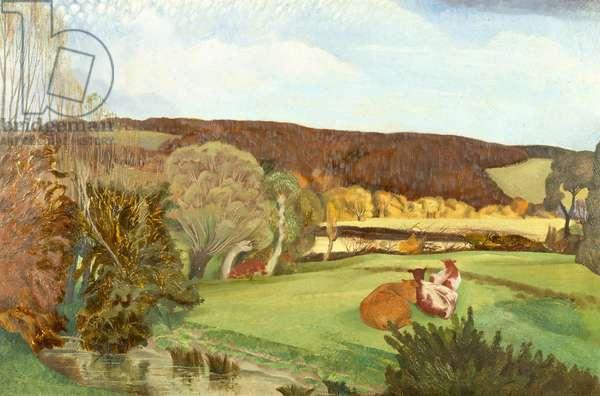 Landscape near Princes Risborough