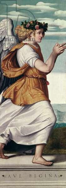 An Angel (panel)
