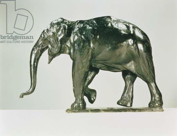 White Elephant (bronze)