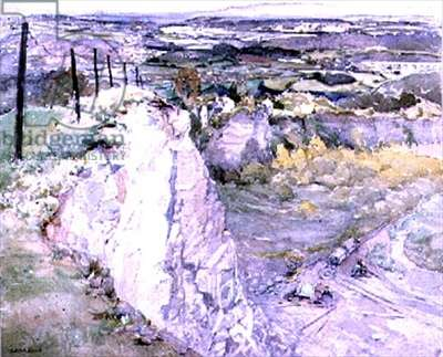 View from a quarry's edge