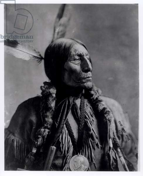 Portrait of Chief Wolf Wrobe, c.1904 (gelatin silver print) (b/w photo)