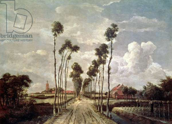 The Avenue at Middelharnis, 1689 (oil on canvas)
