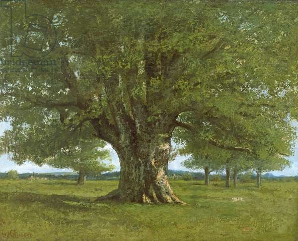 The Flagey Oak Tree, 1864