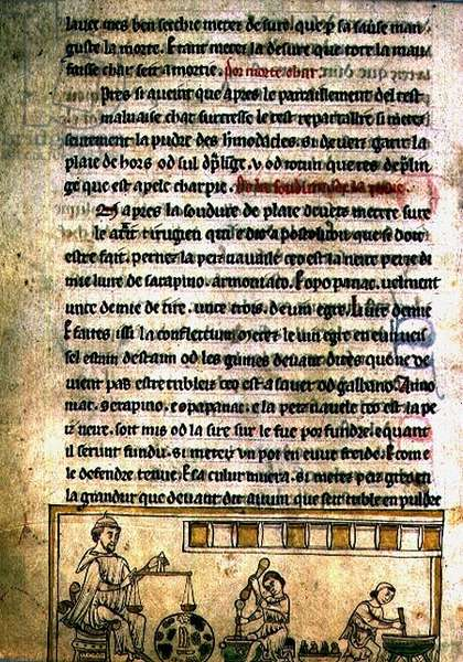 Ms.O.1.20.f.240r An Apothecary's workshop, from ' De Nominibus Herbraicis' (vellum)