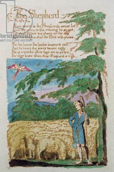 The Shepherd, from Songs of Innocence, 1789 (coloured etching)