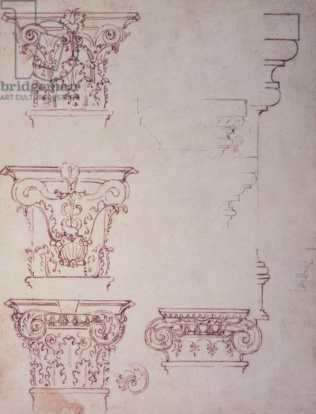 Studies for a Capital (brown ink)