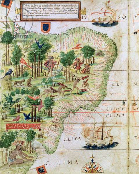 Brazil from the 'Miller Atlas' by Pedro Reinel, c.1519 (detail of 75615)