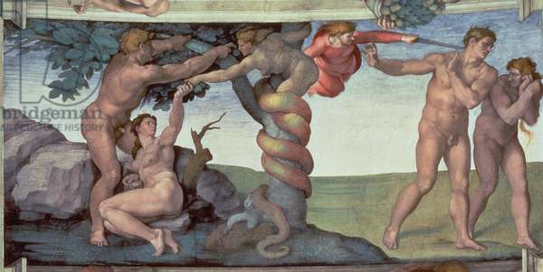 Sistine Chapel Ceiling (1508-12): The Fall of Man, 1510 (fresco) (post restoration)