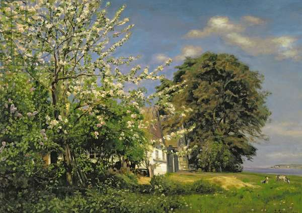 Spring Blossom, 1908 (oil on canvas)