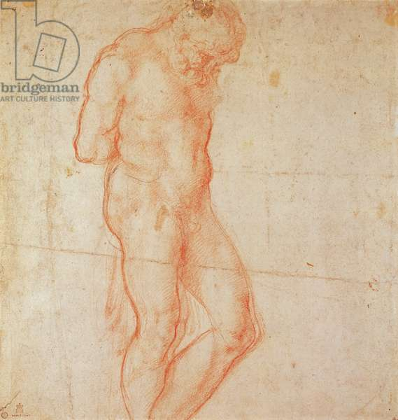 Study of a Nude (red chalk on paper)