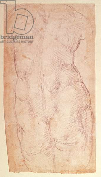 Study of the back of a nude figure (black chalk on paper) (verso)