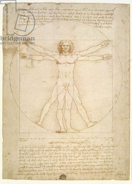 The Proportions of the human figure (after Vitruvius), c.1492 (pen & ink on paper)