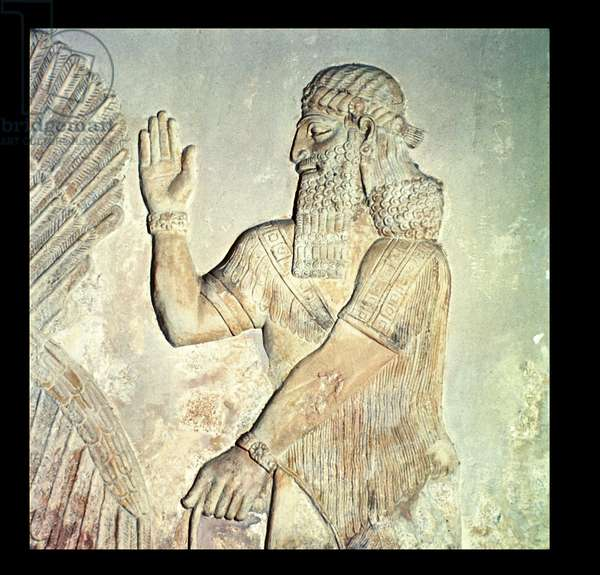 Dignitary, relief, Assyrian (marble)