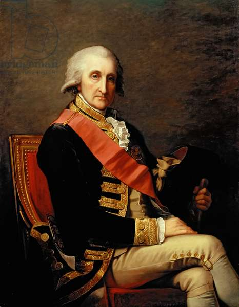 Admiral George Brydges Rodney (1719-92) 1791 (oil on canvas)