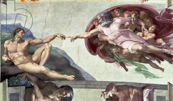 Sistine Chapel Ceiling (1508-12): The Creation of Adam, 1511-12 (fresco) (post restoration)
