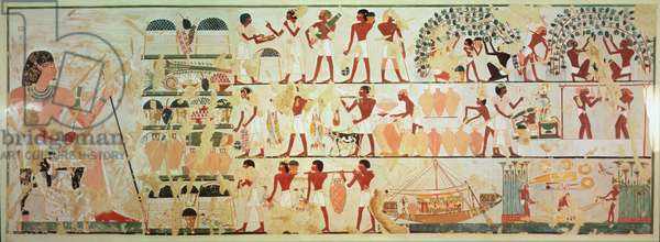 Vintagers and rope makers at work, copy of a wall painting from the tomb of Khaemwese at Thebes, c.1450 BC