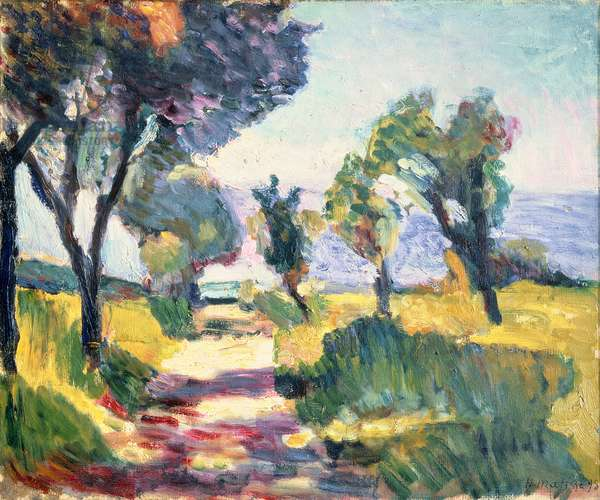 Corsican landscape with Olive Trees, 1898 (oil on canvas)