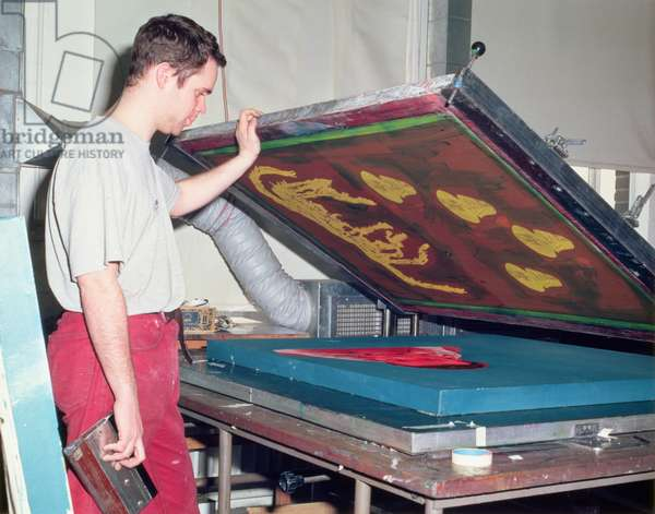 Processes of Silk Screen Printing: Stage 1 - Image Under the Silk (photo)