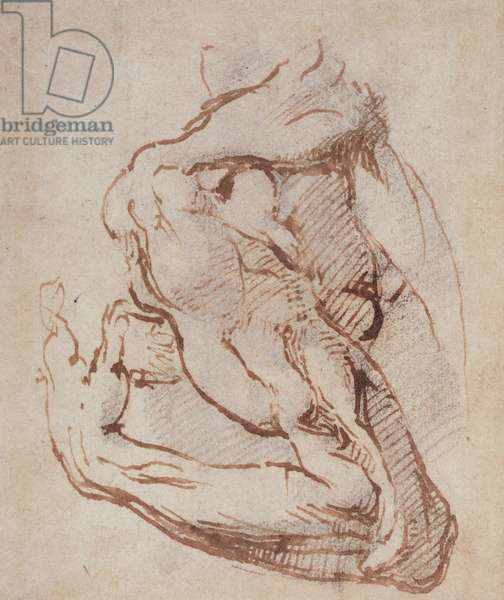 Study of an Arm (ink) Inv.1859/5/14/819 (W.49)