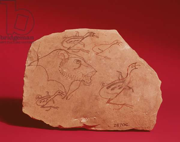 Ostrakon depicting the head of a lion and four quail chicks, probably from Thebes, 19th-20th Dynasty (painted limestone)