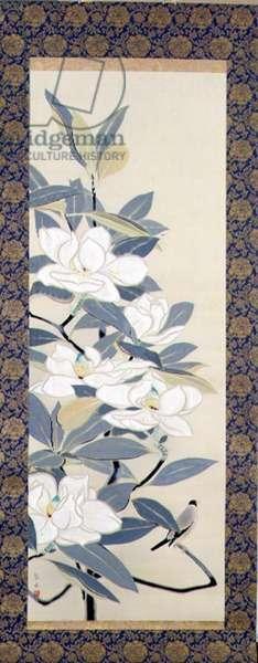 Bullfinch and magnolias